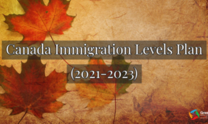 Notice: Necessary Information for the Immigration Levels Plan 2021-2023